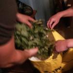 Уроженец сосьвинского села Романово продал наркотик закупщику