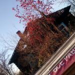 """Этот дом пострадал от поджога в октябре: полицейские задержали подозреваемого в четырех поджогах, случившихся в поселке в октябре. . Фото: Андрей Клеймёнов, сайт """"ПроСосьву.ru""""."""