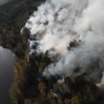 В Сосьвинском округе зафиксирован первый лесной пожар