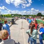 Торжественное открытие моста состоялось 29 июня.